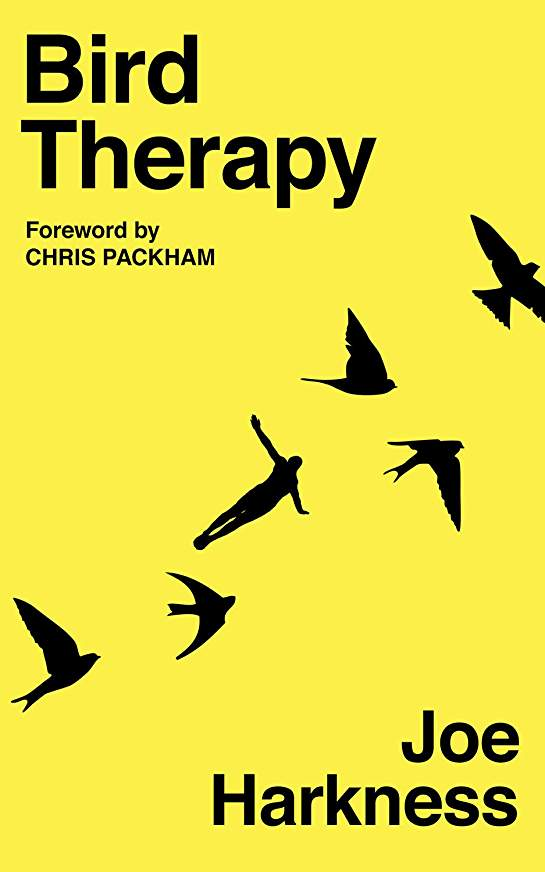 Bird Therapy - Joe Harkness